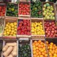 """Nota: Diario Popular 1/4/2020 Frutas, verdudas y carne están registrando en los últimos días aumentos """"escandalosos"""" de entre el 20 y 40%, y hasta 100% en algunos casos según las […]"""