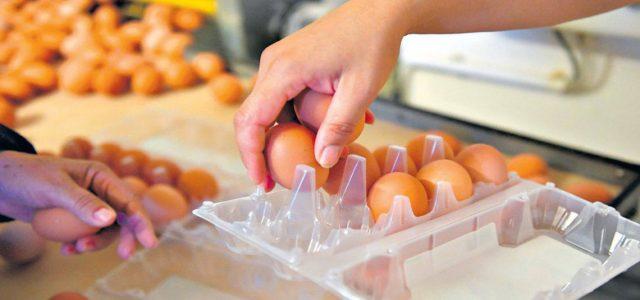 Nota: Diario Popular 22/5/20 Consumidores Libres y la Cámara de Productores Avícolas dicen que aumentó la demanda, los costos son más caros y hay conductas especulativas. El precio de los […]