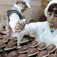 Nota: Télam 10/4/17 Los alimentos tradicionales de la celebración de la Pascua como pescados, chocolates y roscas, registraron aumentos interanuales en sus precios que oscilan entre el 17% y 56%, […]